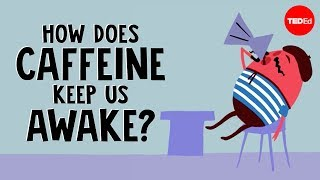 Download How does caffeine keep us awake? - Hanan Qasim Video