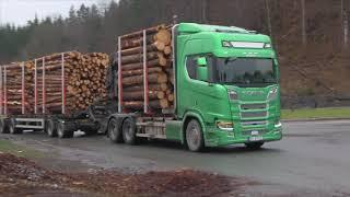 Download AT Skogs hogst på Gumøy i Kragerø 2018 Video