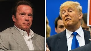 Download Arnold Schwarzenegger And Trump Fight On Twitter Video