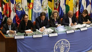 Download Retos y oportunidades del Desarrollo y la Gobernanza Territorial en la perspectiva de los ODS Video