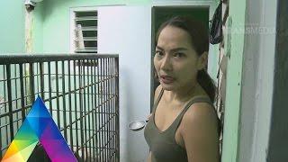 Download BERBURU - PENYELAMATAN BERUANG MADU (15/3/16) 3-2 Video