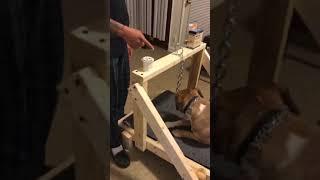 Download DIY Carpet Mill made easy @ GJKennels Video