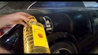 Download Arabanın Yakıt Deposuna Benzin Yerine Çiçek Yağı Koyarsak Ne Olur? Kırsal Benzini Bulduk :D Video