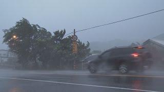 Download Violent Wind, Torrential Rain, Huge Waves - Typhoon Matmo 4K Stock Footage Screener Video