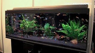 Download Aquarium ideas from InterZoo 2014 (pt.25) - Saigon Aquarium Video