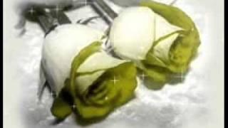 Download GRACIAS POR LLEGAR A MI VIDA Video