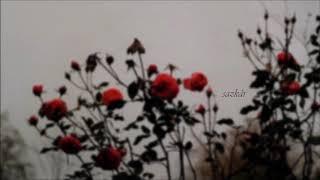 Download münip utandı   girdim yârin bahçesine / gül dibinde gülîzâr... Video