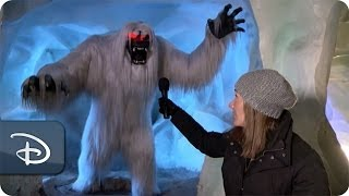 Download The Abominable Snowman Inside the Matterhorn | Disneyland Resort Video