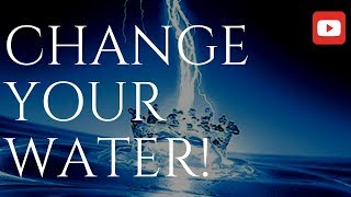 Download Change Your Water, Change How You Manifest, Change Your Life! (PH Test Included!) Video