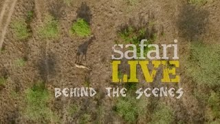 Download Behind the Scenes - safariLIVE goes on Nat Geo WILD Video