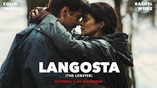 Download LANGOSTA (THE LOBSTER) - trailer español Video