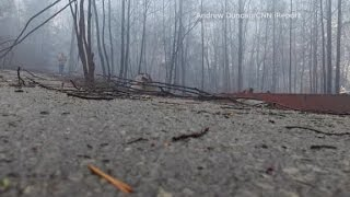 Download Drone captures damage to wildfire-ravaged Gatlinburg Video