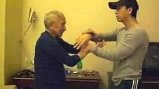 Download Ip Chun Donnie Yen Chi Sao Video