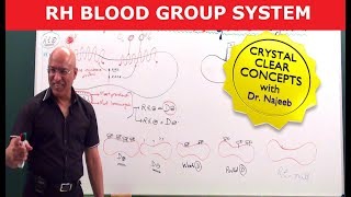 Download Mastering Rh Blood Group System Video