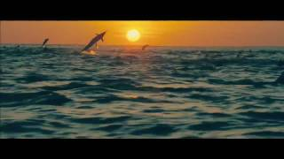Download Oceans - Disney Nature Official Trailer 2010 Video