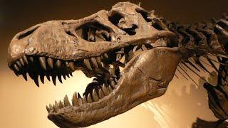 Download Больше, чем тиранозавр - #1 Док. Эпизод. Video