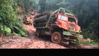 Download V10 HardCore Logging Truck | Muddy Road After Raining | Difference Japanese And European Engine Video