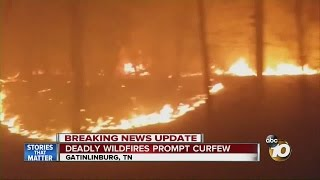 Download Deadly wildfires prompt curfew Video