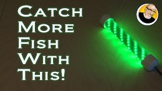 Download Catch More Fish With This! Video