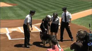 Download 2012/05/13 Cpl. Leavey and Sgt. Rex honored Video