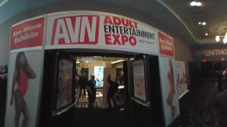 Download 2017 AVN EXPO In 360° Video