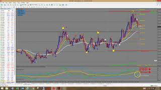 Download How To Read The TDI (Traders Dynamic Index) Indicator Video