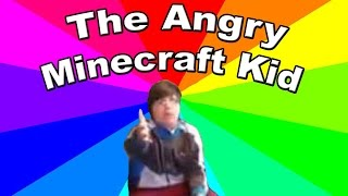 Download What is get the F outta my room I'm playing Minecraft? Meme explanation and analysis Video