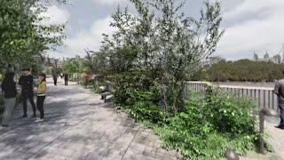 Download Garden Bridge 360 Experience Video