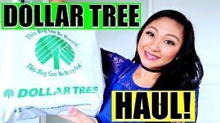 Download DOLLAR TREE HAUL 2017! Video
