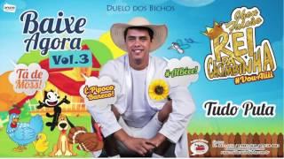 Download REI DA CACIMBINHA - TUDO PUTA - ÁUDIO OFICIAL 2016 Video