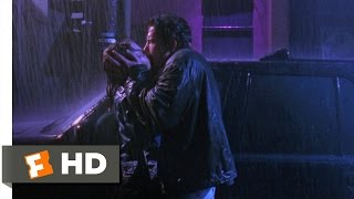 Download Chasing Amy (8/12) Movie CLIP - A Kiss in the Rain (1997) HD Video