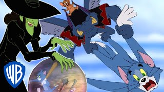 Download Tom & Jerry | To Find the Wicked Witch | WB Kids Video