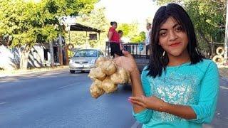 Download Sorprendiendo a Paola la vendedora de Jicamas dando sus impresiones por su video viral el salvador Video