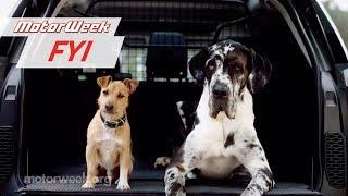 Download Dog-Friendly Cars | MotorWeek FYI Video