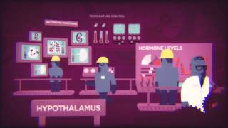 Download Under Construction: Alcohol and the Teenage Brain Video