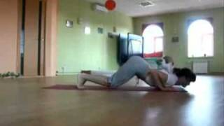 Download Yoga Cat (Cat Joins in Yoga Session!) Video
