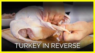 Download Turkey In Reverse Video