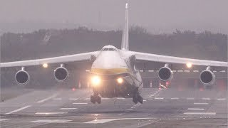 Download Cargo Monster Antonov 124 – 5 Days waiting at Düsseldorf airport - with A380 overhead landing Video
