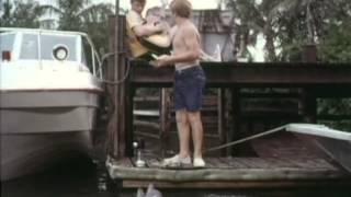 Download Flipper - Staffel 3, Folge 1 - Das Flugzeugwrack Video
