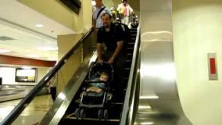 Download Adoption Homecoming Video