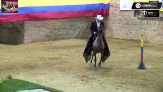 Download Campeona Reservada Viajera de Yarumalito Trocha Colombiana, Villeta Grado B Video