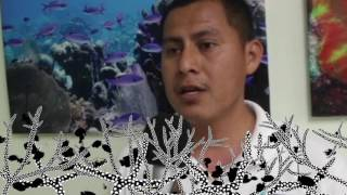 Download What is the importance of the Belize barrier reef? Video
