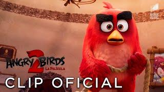 Download ANGRY BIRDS 2: LA PELÍCULA. Avance exclusivo. En cines 23 de agosto. Video