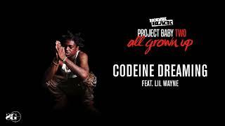 Download Kodak Black - Codeine Dreaming (feat. Lil Wayne) Video