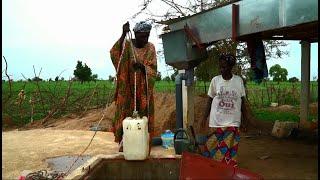 Download Empowering Women Through Access to Water - Senegal Video