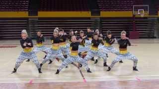 Download ASU Dance Team- Hip Hop 2014 Video