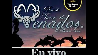 Download Banda Tierra de Venados - CD En Vivo 2014 completo ✔️ Video