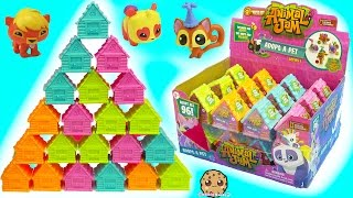 Download Full Box 24 Animal Jam Surprise Blind Bag Houses with Mystery Game Codes - Toy Video Video
