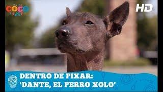 Download Coco de Disney•Pixar | Dentro de Pixar: Dante, el perro Xolo | HD Video