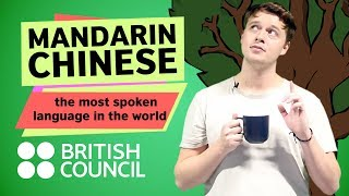 Download Mandarin Chinese: the most spoken language in the world Video